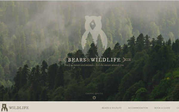 Izdelava spletne strani Bears and wildlife